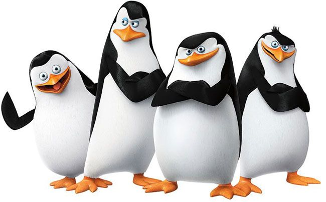 Liệu có nhân vật nào đáng yêu như 4 chú chim cánh cụt này