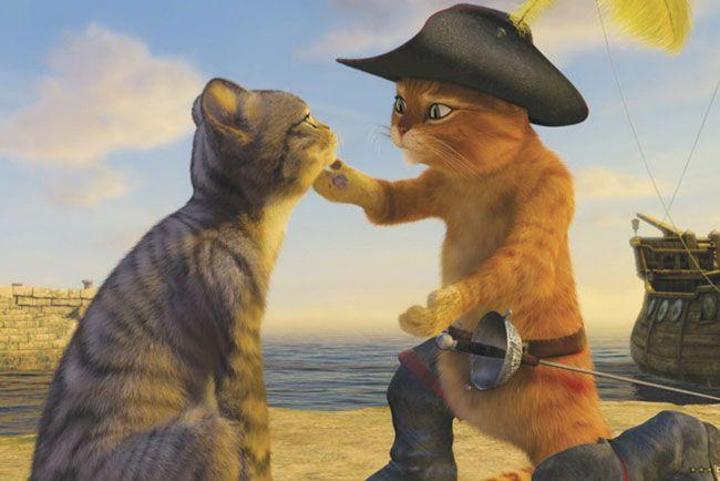 Mèo Đia Hia thông minh, dũng cảm và nhanh nhẹn
