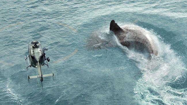 Con cá mập khổng lồ sót lại từ thời tiền sử